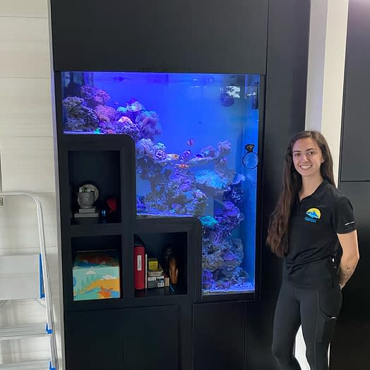 Large Stepdown Coral Reef Aquarium