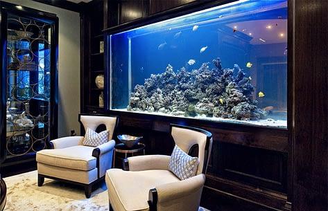 Beautiful Residential Fish Tank
