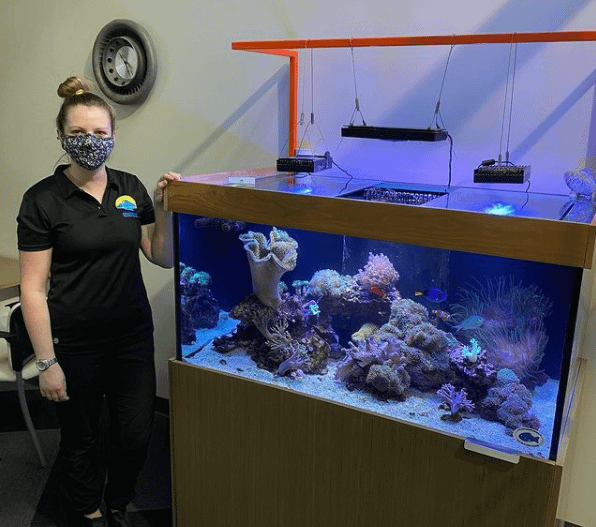 Employee Cleaning Fish Tank