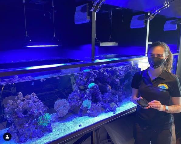 Berklee In Front Of Customers Aquarium