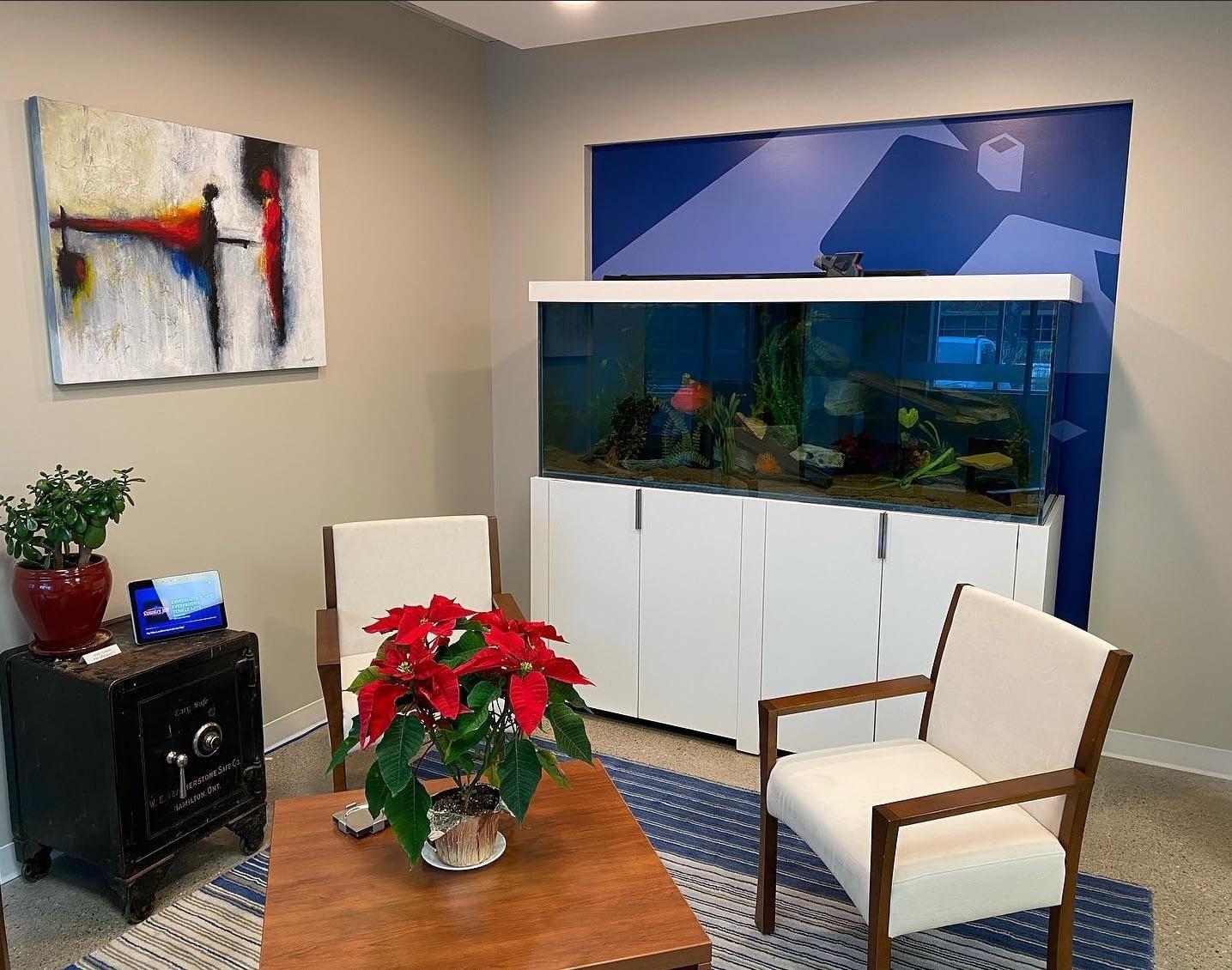 Aquarium and Room Design