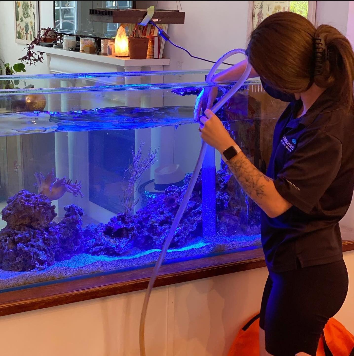 Berklee Maintaining an Aquarium